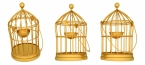 gold cages _1453x654